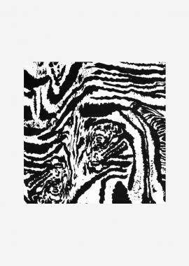 Rubans Zebra